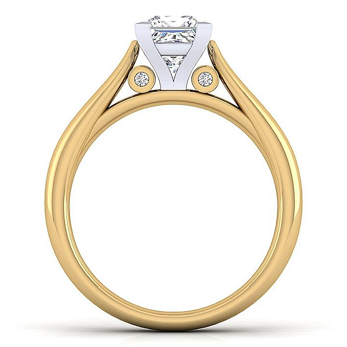 14K White-Yellow Gold Princess Cut Diamond Engagement Ring