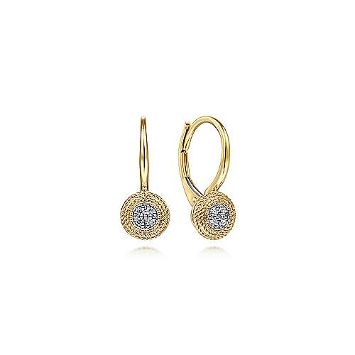 14K Yellow Gold Round Twisted Rope Frame Diamond Leverback Earrings