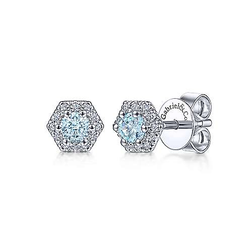 14k White Gold Lusso Color Fashion Earrings