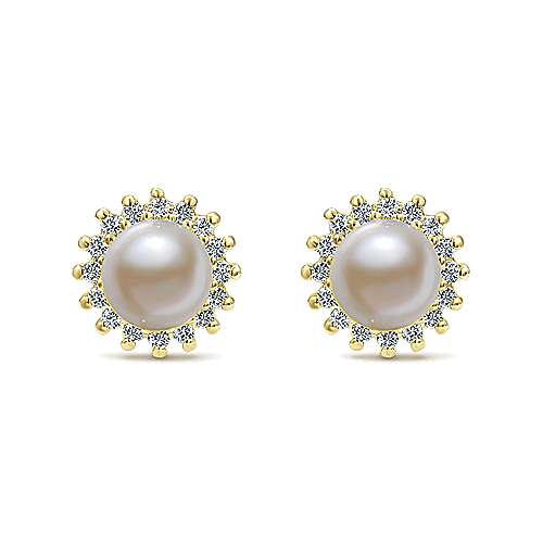 Gabriel - 14k Yellow Gold Lusso Color Stud Earrings