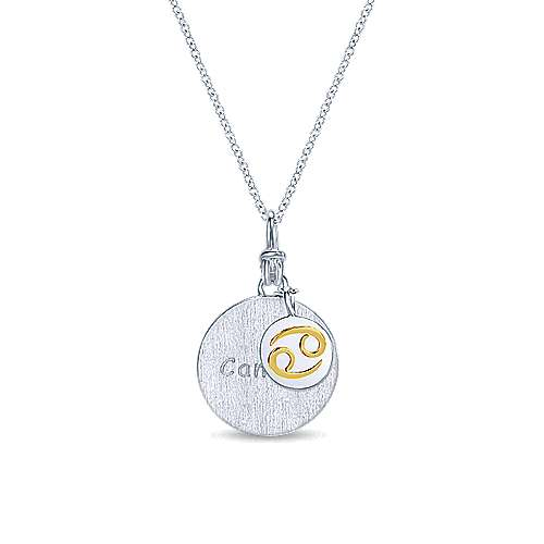 925 Sterling Silver-18K Yellow Gold Cancer Zodiac Charm Necklace