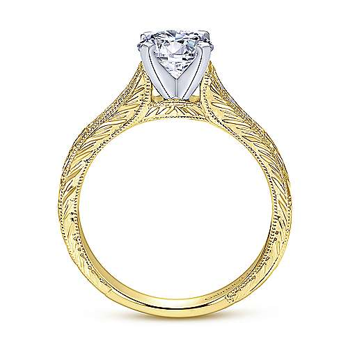 Audra 14k Yellow And White Gold Round Straight Engagement Ring angle 2