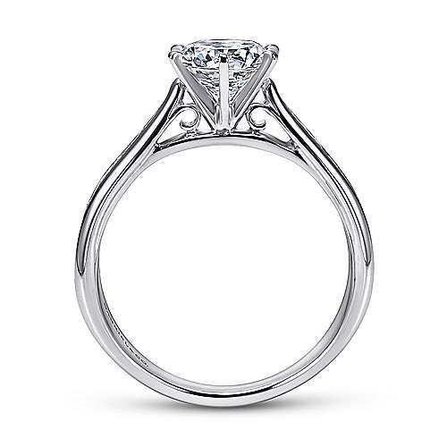 Danielle 14k White Gold Round Straight Engagement Ring angle 2