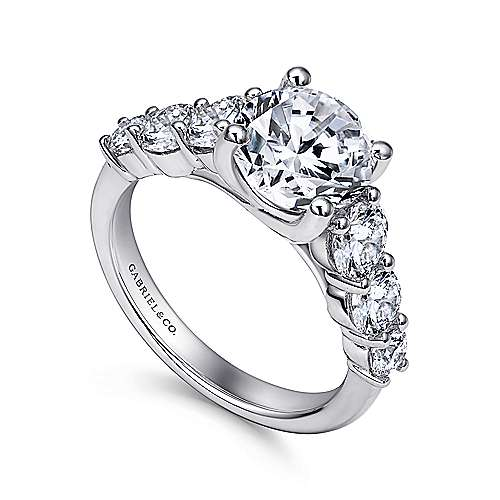 Darby 14k White Gold Round Straight Engagement Ring angle 3