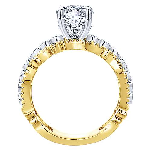 Delphine 18k Yellow And White Gold Round Free Form Engagement Ring angle 2