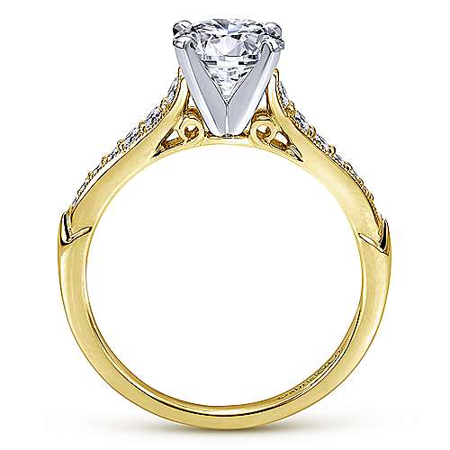 Hollis 14k Yellow And White Gold Round Straight Engagement Ring angle 2