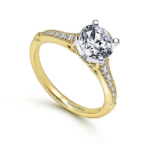 Hollis 14k Yellow And White Gold Round Straight Engagement Ring angle 3