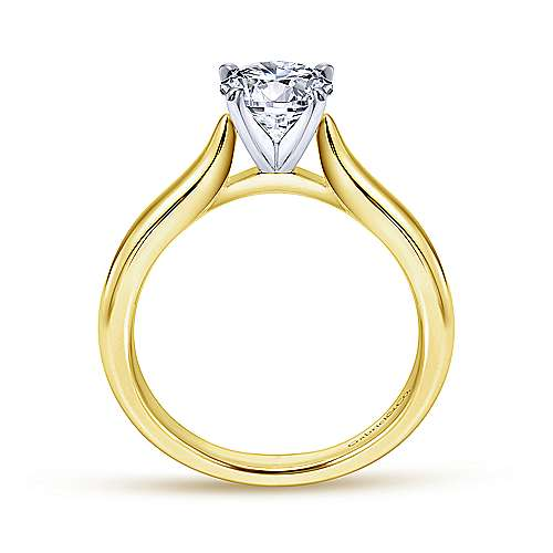 Lauren 14k Yellow And White Gold Round Solitaire Engagement Ring angle 2