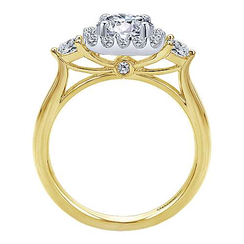 Martine 14k Yellow And White Gold Round Halo Engagement Ring angle 2