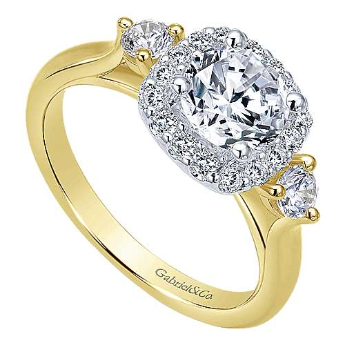 Martine 14k Yellow And White Gold Round Halo Engagement Ring angle 3