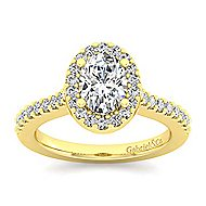 Kelsey 14k Yellow Gold Oval Halo Engagement Ring angle 5