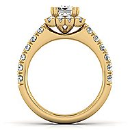 Rosalyn 14k Yellow Gold Emerald Cut Halo Engagement Ring angle 2